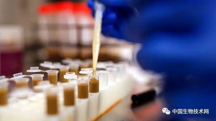 癌症免疫治疗:粪便移植带来曙光